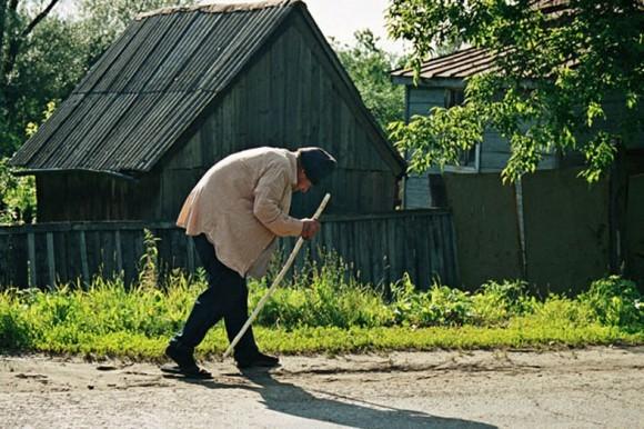 Фото: Elena Bogomolova, photosight.ru
