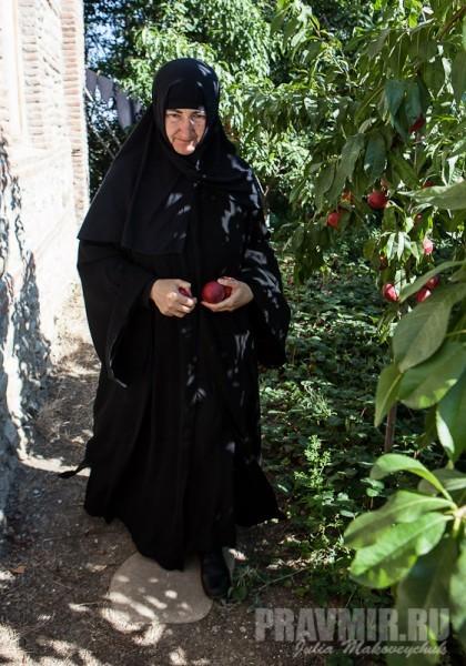 Достаточно было восхититься красотой фруктов, чтобы матушка немедленно начала угощать...