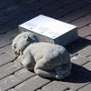 Акция против абортов в Латвии: 27 скульптур нерожденных детей (ФОТО)