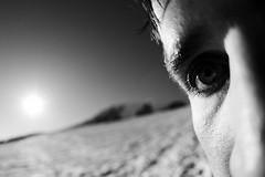 Скотт Смайли: Жить после зрения