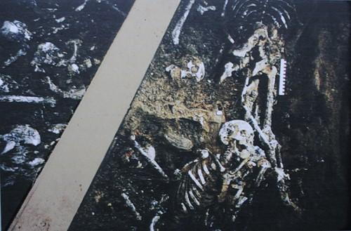 В археологическом раскопе на бутовском полигоне размерами в 12 кв м специалисты насчитали останки 149 человек.