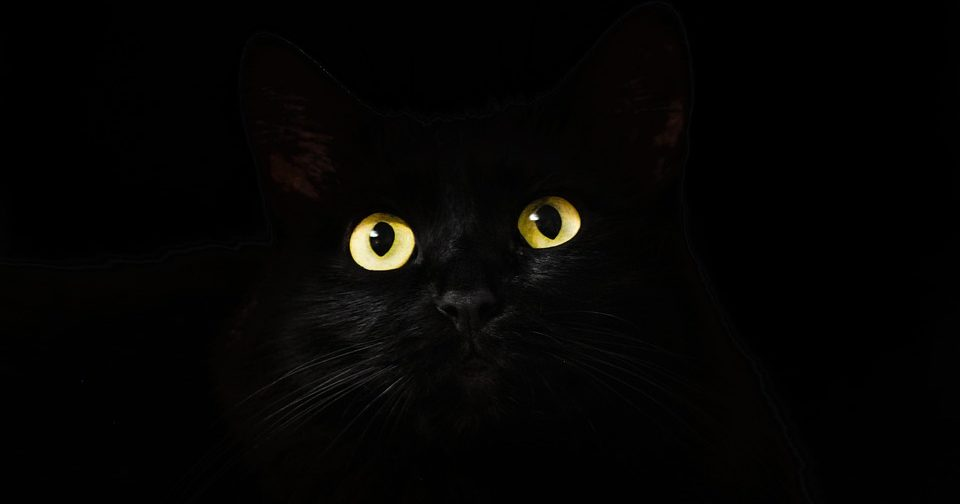 Приметы и суеверия: верить ли в приметы и околоцерковные суеверия?