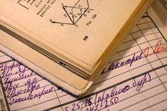Ирина Лукьянова: Школьное образование утратило связь с реальностью