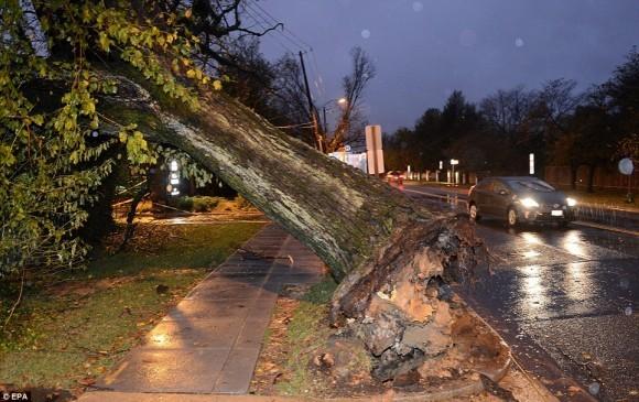 Последствия урагана Сэнди (31)