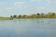 Красный террор: тринадцать убийств на берегу реки Цны