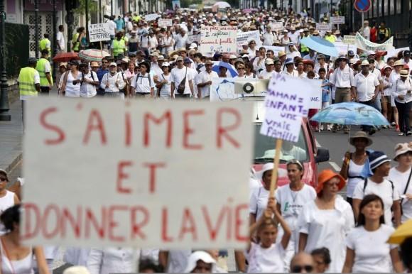 Франция против однополых браков (9)