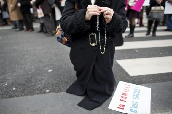 Франция против однополых браков (8)