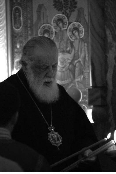 Святейший Патриарх Илия (23)
