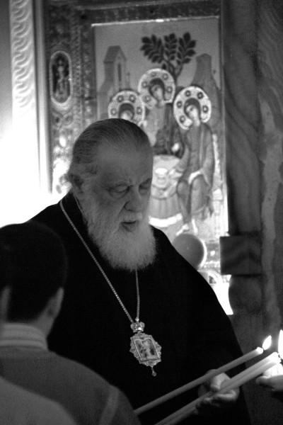 Святейший Патриарх Илия (12)