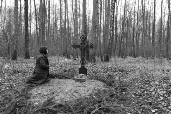 Тесницкий лес, фотограф Андрей Лыженков, 2011 год_photounion.ru