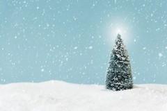 Апология рождественской елки