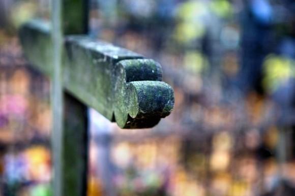 Осень. (Даниловское кладбище. Москва)