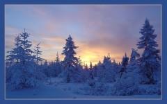Тайга, добрые самаряне и как замерзают спящие