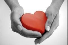 Сердце плотяное, каменное, шерстяное
