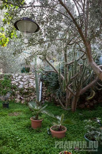Возле келий — домиков на несколько человек — разбиты маленькие садики