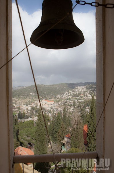 Вид с колокольни собора