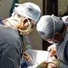 Новый закон о трансплантации органов впервые разрешит посмертное детское донорство