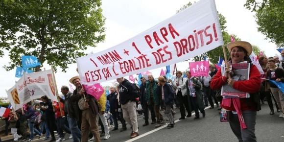 Франция против однополых браков (5)