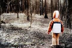 Викторина «Потерявшиеся дети»