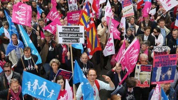 Франция против однополых браков (16)
