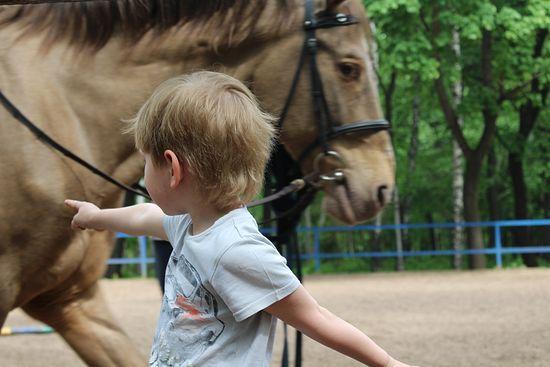 Нет, наверное, ребенка, который, завидев лошадь, не захотел бы прокатиться. Фото: А.Рахлина