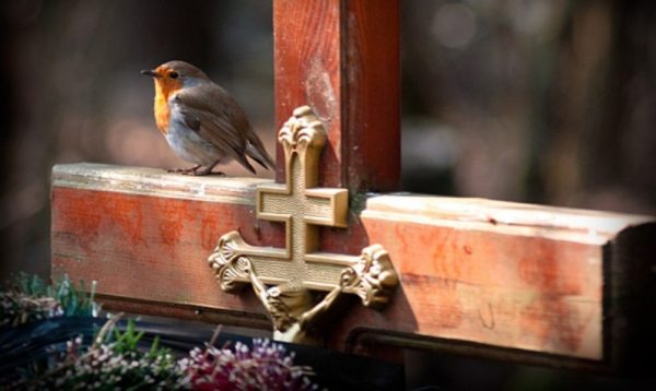 Православная Церковь отмечает Радоницу — день особого поминовения усопших
