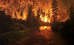 Григорий Куксин: Страна вновь не готова к пожарам