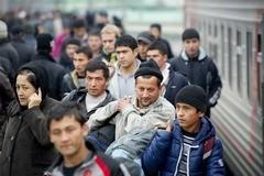 Два мифа о мигрантах