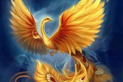 Преображение Христово, гусеницы, бабочки и птица Феникс