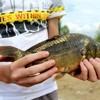 В честь 1025-летия Крещения Руси Орская епархия провела чемпионат по рыбной ловле