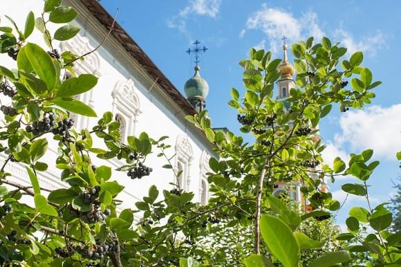 В 1935 году территория монастыря передана в ведение хозяйственного управления НКВД. В соборном храме разместили архив НКВД Московской области, в Никольском – склад конфискованной мебели и картофелехранилище, остальные пригодные помещения были переоборудованы и заселены