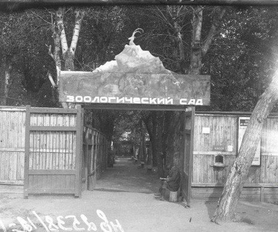 Вход в зоосад в 30-е годы. Сначала животных размещали в здании конюшни на территории краеведческого музея.