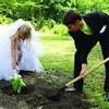 После каждого венчания в храме при МГИМО новобрачные сажают рядом дерево