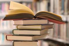 Учебник истории – единый и неделимый?