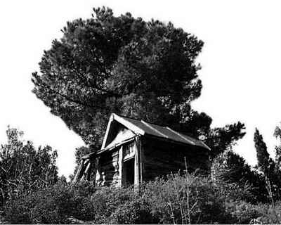 Каливка Старца в Иверском лесу.