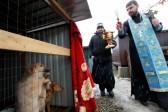 В Ставрополе освящен первый в городе приют для бездомных животных