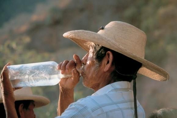 Из-за алкоголя в Америке ежегодно умирают 80 тыс. человек