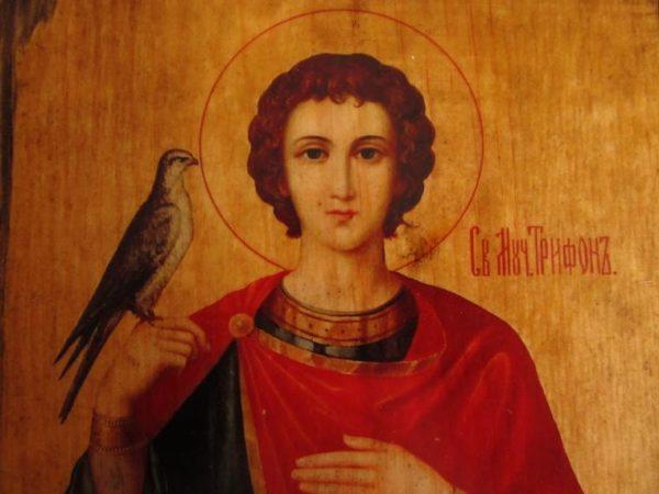 Церковь чтит память святого мученика Трифона