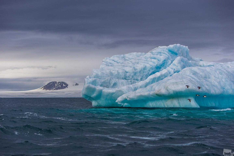 Северный ледовитый океан картинка для детей