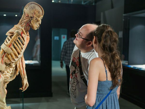 Митрополит Екатеринодарский Исидор поддержал протесты жителей против анатомической выставки