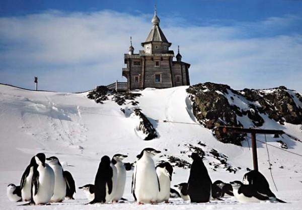 В Антарктиду отправилась экспедиция для освящения храма
