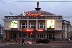 Ярославский цирк выступит для детей с синдромом Дауна