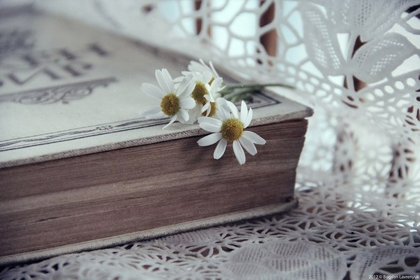 Какая книга помогла прийти к вере? Личный опыт