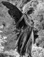 40 дней после смерти. Ангел Хранитель