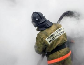 Двух детей, семерых взрослых и котенка спасли пожарные в Ленобласти
