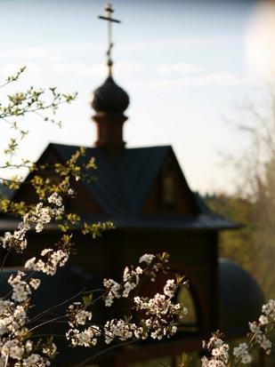 pasha_spring_view