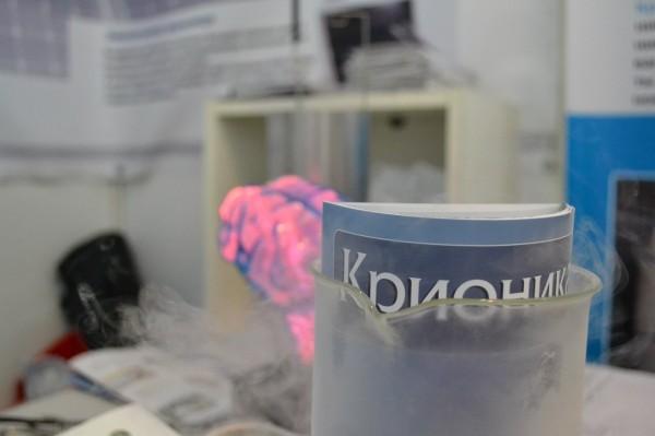 Фото: kriorus.ru