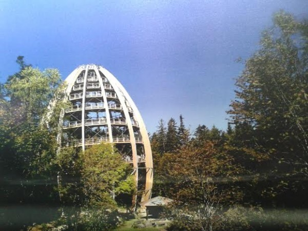 Обзорная башня Баульвильпфельфад. Архитектор Йозеф Штёгер. Германия. 2009 год