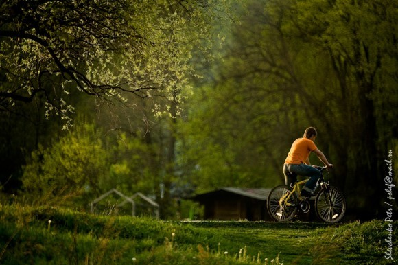 Волгоградцев приглашают на велоэкскурсию по храмам
