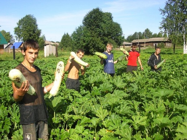 «Школа фермеров Пермского края»